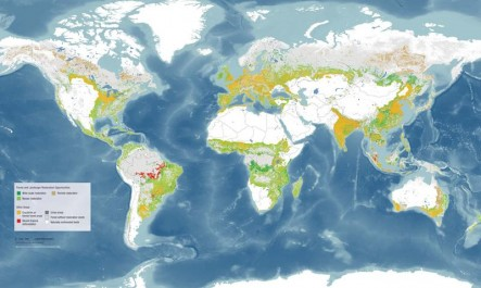 Global restoration opportunity map