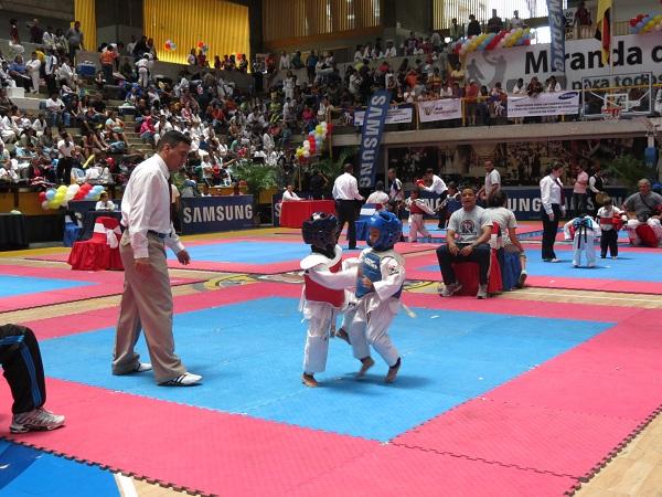 Taekwondo Samsung